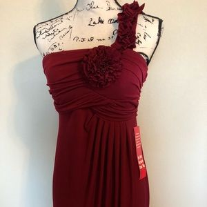 NWT Cranberry formal dress.